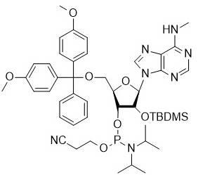 N6-Me-rA phosphoramidite