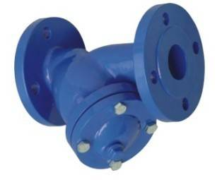 Y type flanged strainer