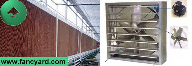 Cooling Pad,Cooling System for Greenhouse,Cooling Pad for Poultry House,Evaporative Cooling Pad,Cool