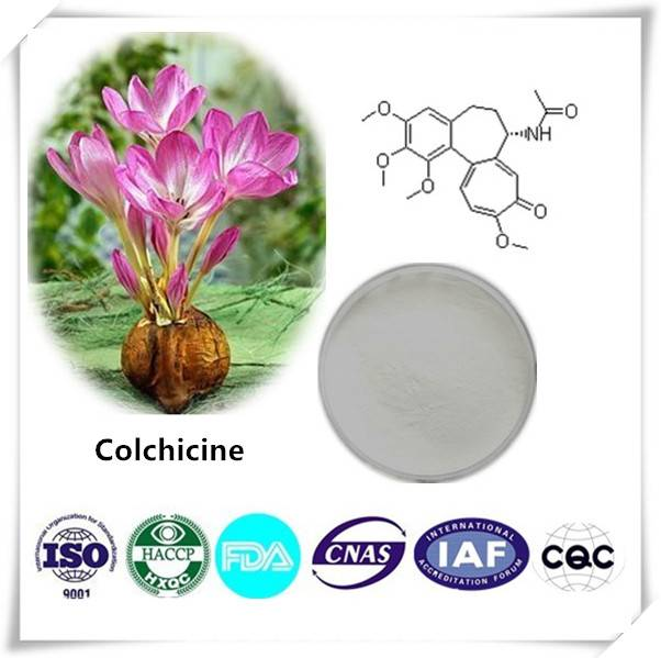 Colchicine 99% CAS NO:64-86-8 10g/bag