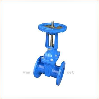 rising stem gate valve,ductile iron gate valve