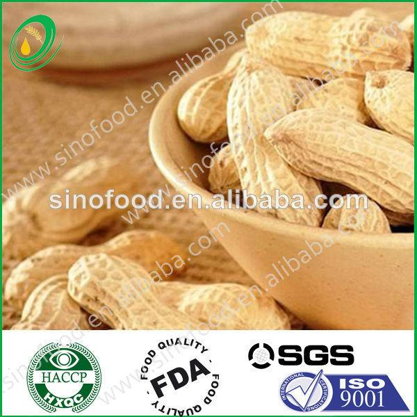 nut&kernel