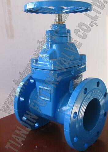 Bs5163 Resilient Seated Gate Valve Non-Rising Stem Rsgv Dn100