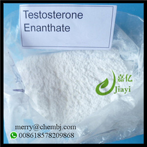 Hot Selling Steroid Powder Testosterone Enanthate