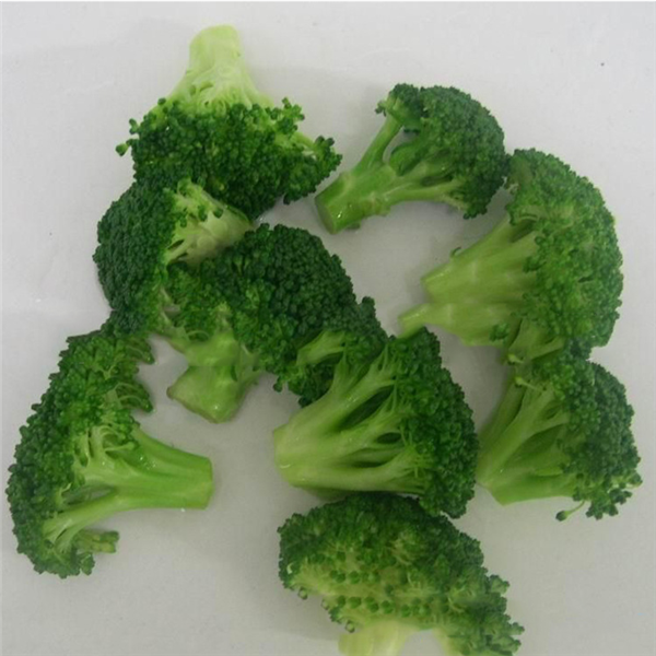 Frozen Broccoli IQF