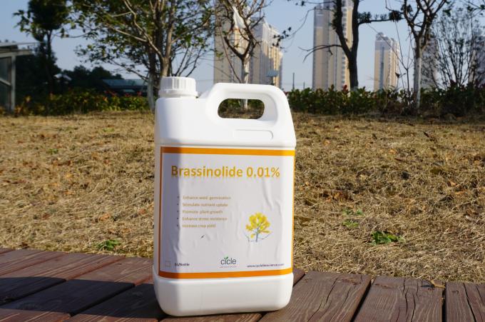 Brassinolide 0.01%