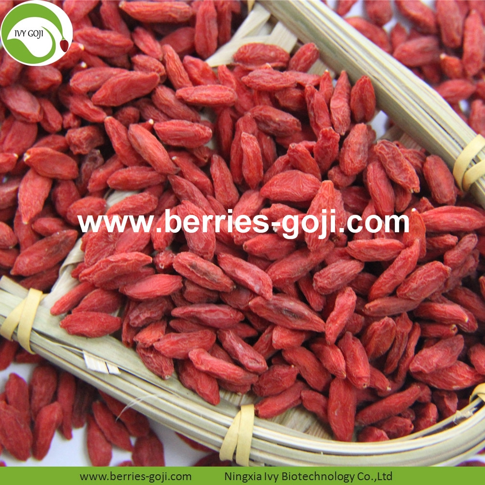 Good Quality For Sale Dried Conventional Goji Berry