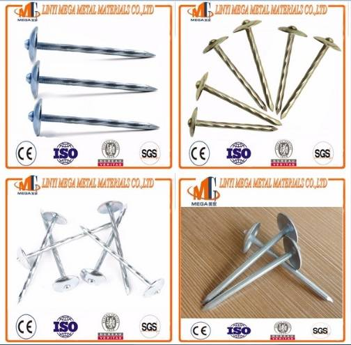 China nalis factory wholesales umbrella head roofing nails with washer