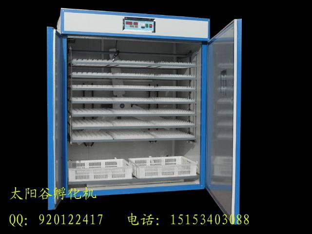 5280 eggs chicken incubator