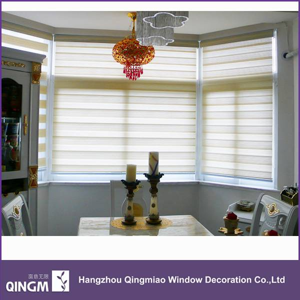 New Pattern Style Decoration Window Shading Zebra Blind