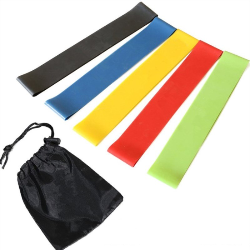 Pull Up Latex Mini Loop Bands Set Of 5 With Carry Bag