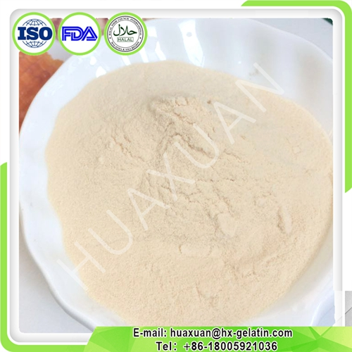 Collagen for Pharmaceutical factory with culture medium use