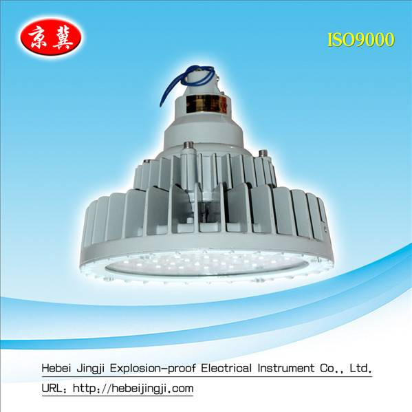 Hot Selling Explosion-proof light/Maintenance-free LED