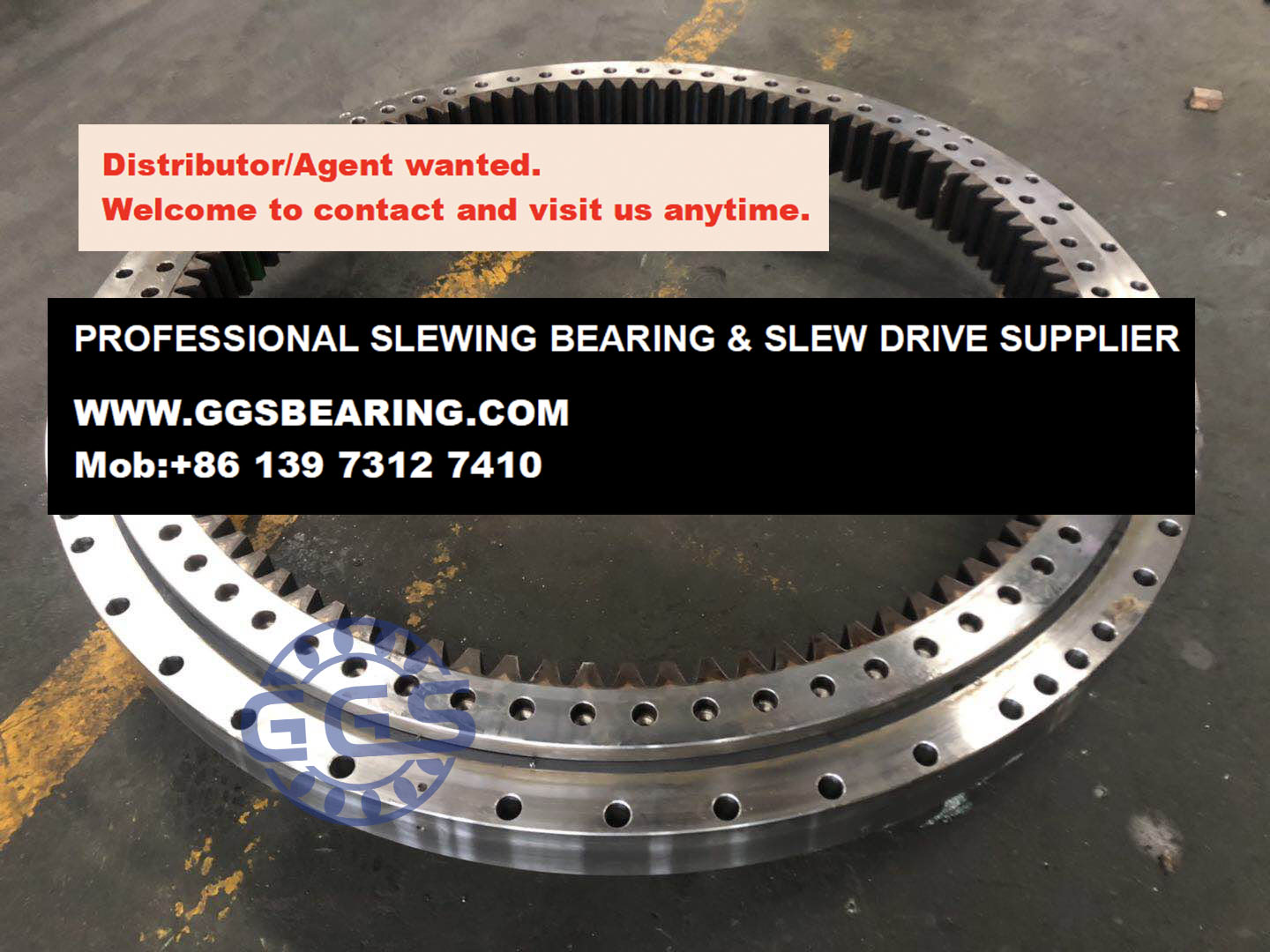 Rollix swing bearing for Liebherr crane
