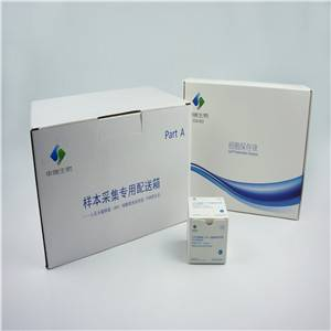 Test kit RealTime High Risk HPV