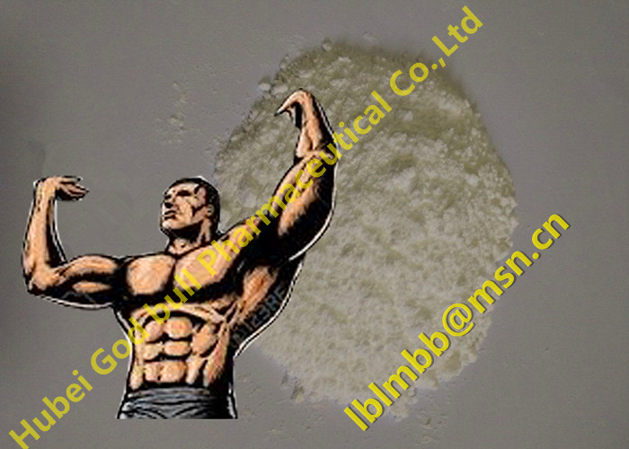 Oral Anabolic Steroids Methyltestosterone Bodybuilding