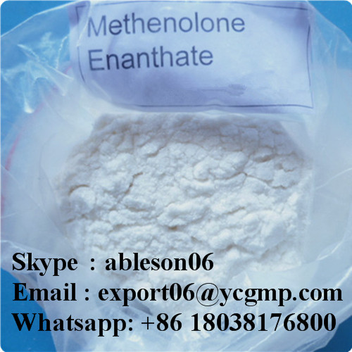 Raw Steroids Powder Primobolan for Muscle Building