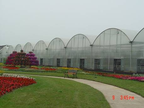 The Multi-Span Greenhouse Plans in Agricultural Area