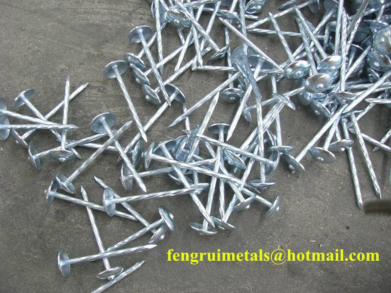 High quality cheap price umbrella roofing nails