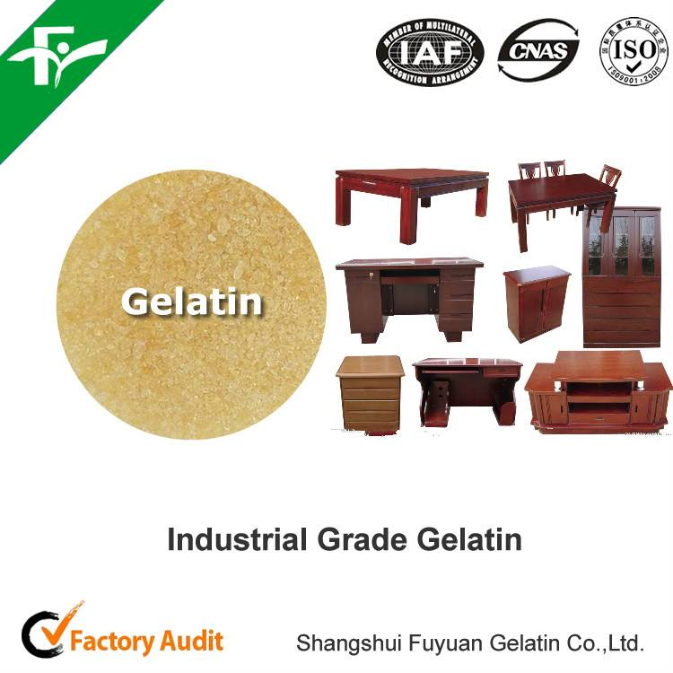 technical bovine industrial gelatin for furniture