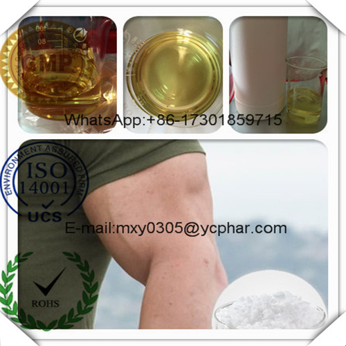 Injectable Cutting Cycle Steroids Oil Masteron Propionate 521-12-0