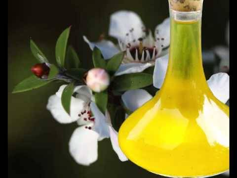 Manuka Oil
