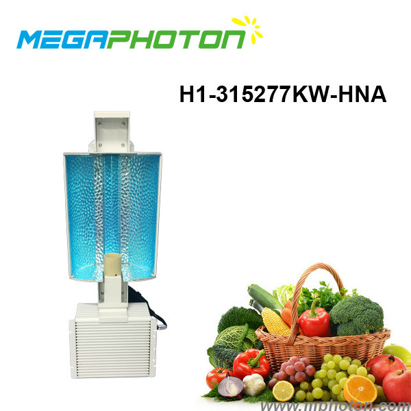 315W HPS or MH Lamp horticultural grow lights for greenhouse hydroponics