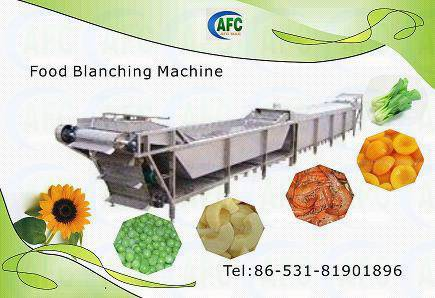 Continues Blanching machine