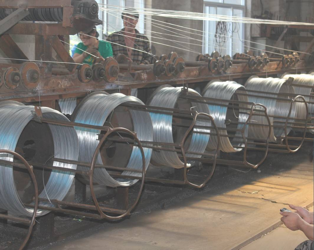 Electro Galvanized Mesh Woven Wire # 12 ( Anping Manufacturer)
