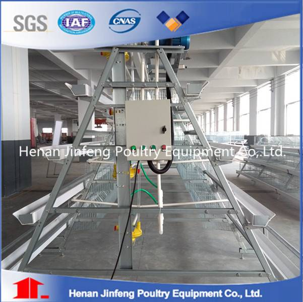 Factory design popular A frame layer battery cages