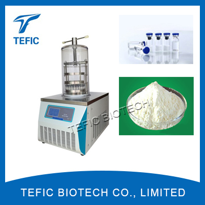 China Top-Press Vacuum Freeze Dryers, Pharmaceutical Vials Lyophilizer Manufacturers