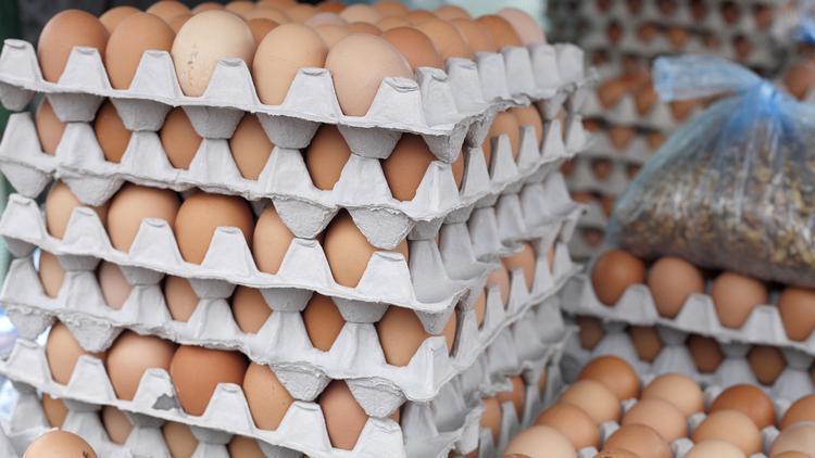 Fresh Shell Chicken Eggs