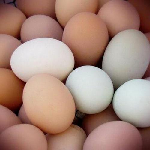 Brown And White Chicken Table Eggs/fresh farm chicken eggs