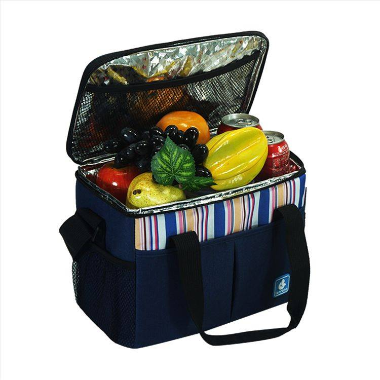 Picnic Insulated Cooler Bag SC005L
