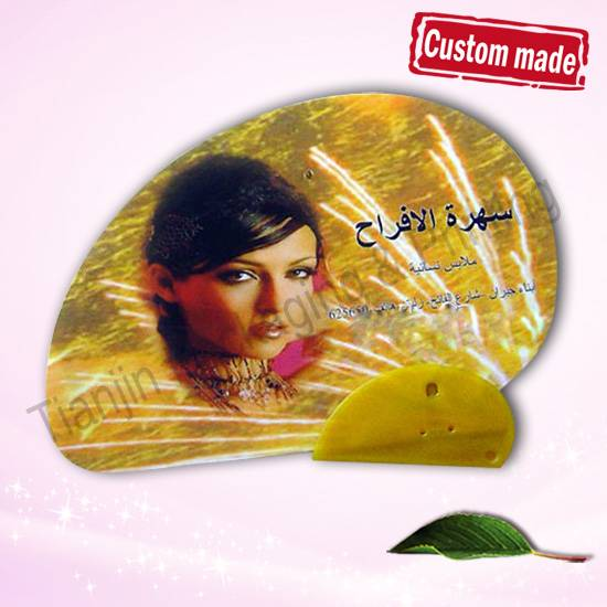 Cheap Plastic Cloth Fan for Advertising Gift