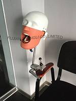 Dental Training Head Simulator Manikin
