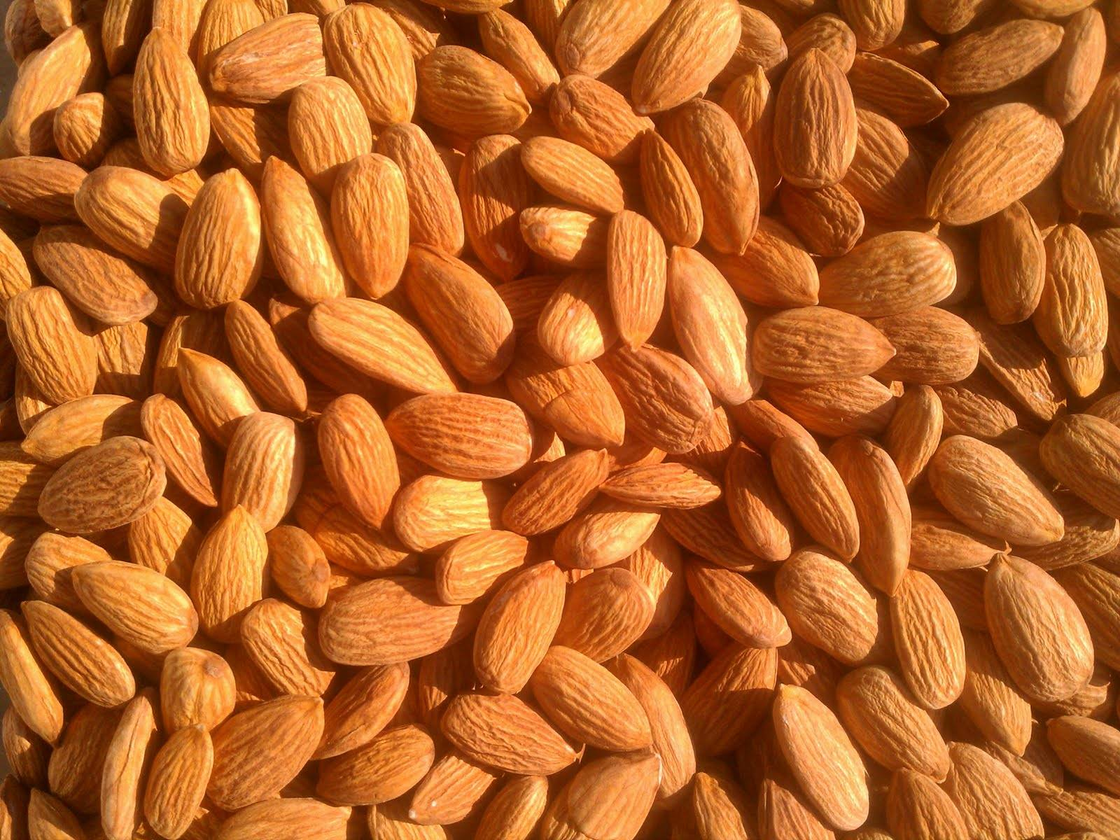 Quality Almonds