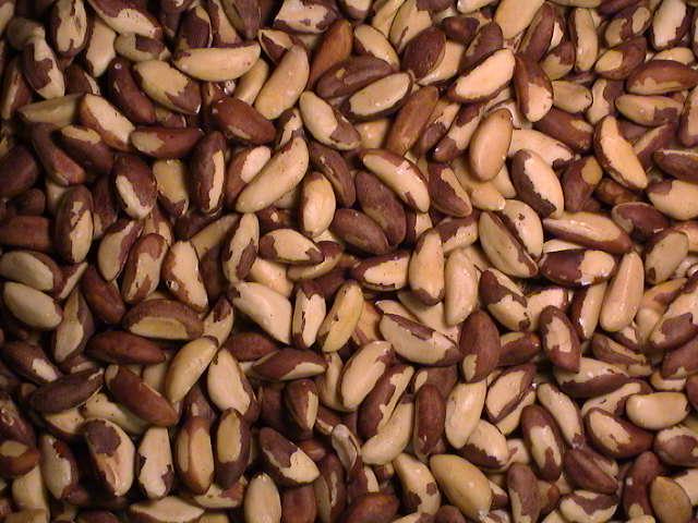 Brazil nuts, Organic Brazil nuts ( Raw & Shell ) for sale
