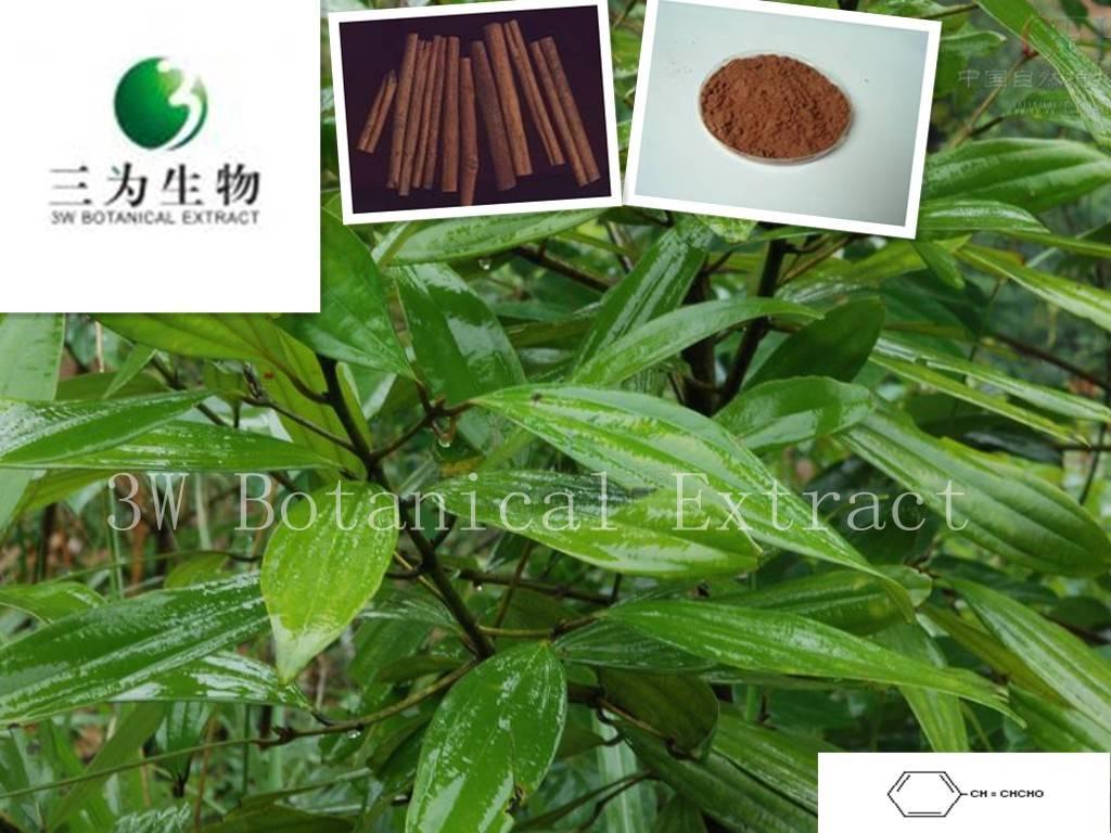 Cinnamon Bark Extract(sales05@3wbio.com)