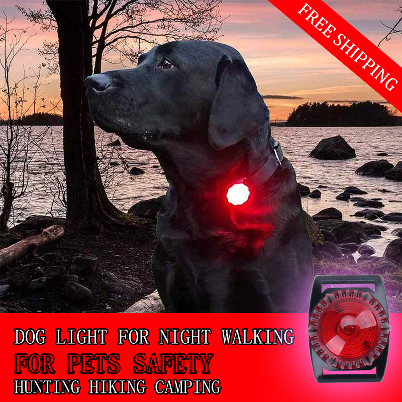 dog collar safety LED lights dual function for night walking