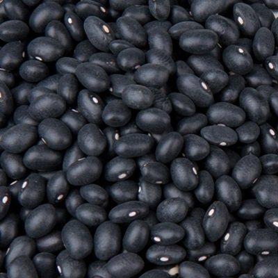Organic Black Bean