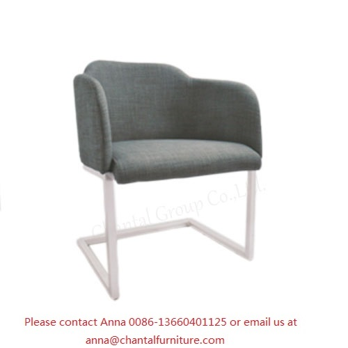 Comfortable Leisure Chair CL-809