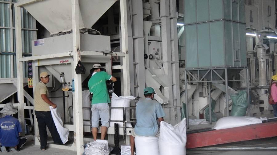 Rice export, Import rice