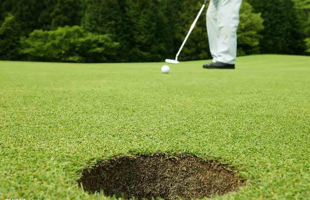 artificial grass-golf-HVG04