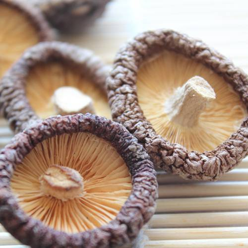 High quality food additive lentinus edodes(shiitake) extract