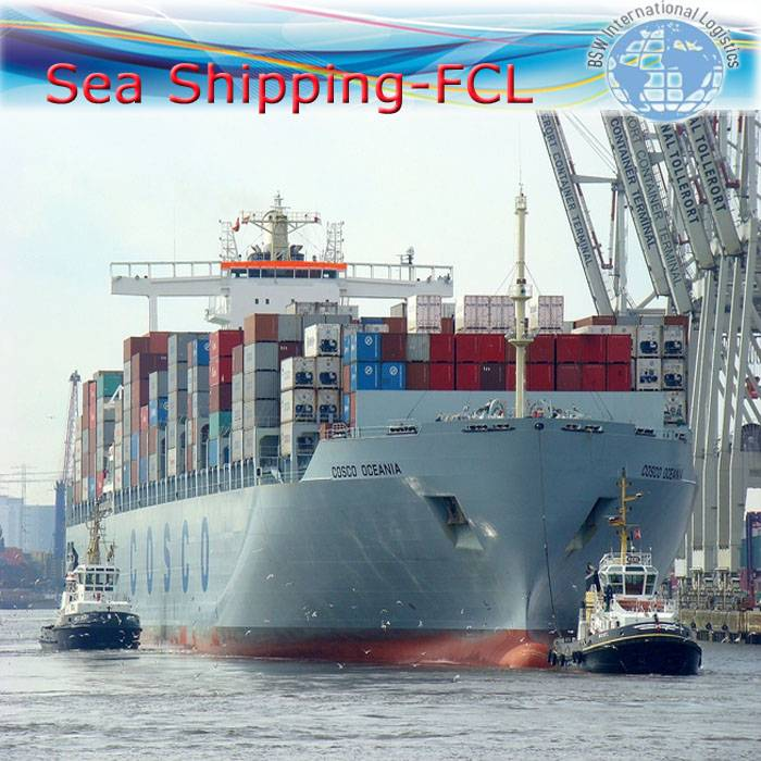 International Logistics as Full Container Loading ship from China to TUNIS