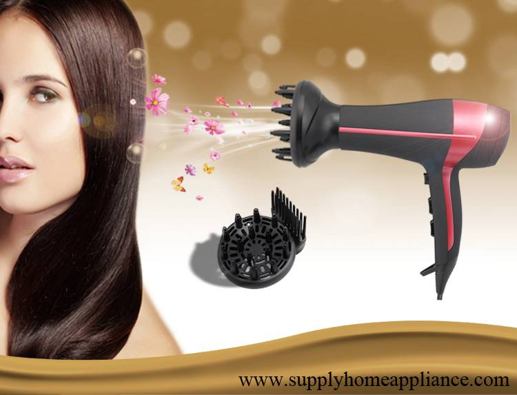 2000w Salon Professional Hair Dryer with Diffuser