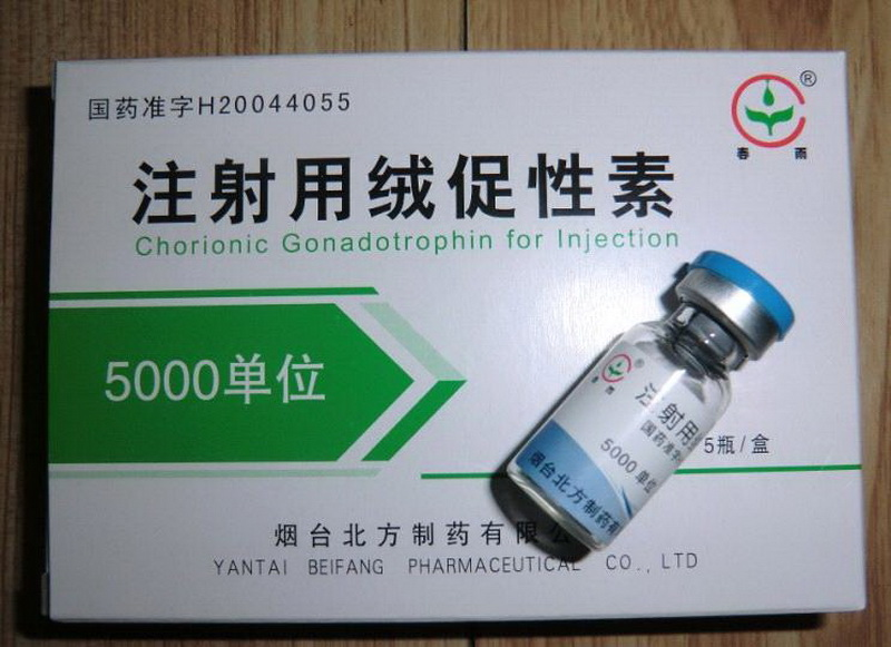 HCG human chorionic gonadotrophin