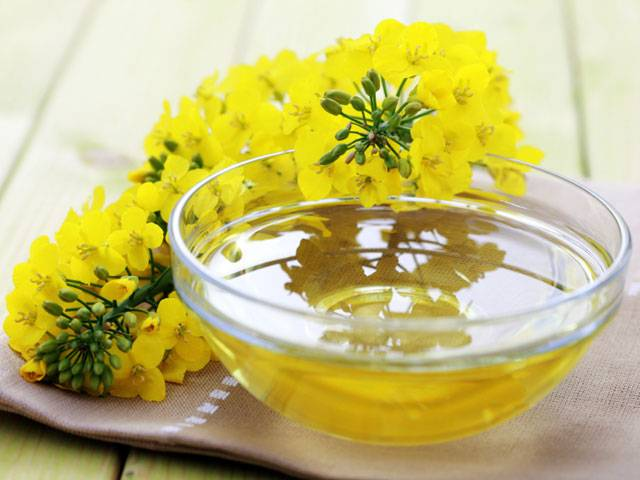 refined bulk rapeseed oil cooking oil