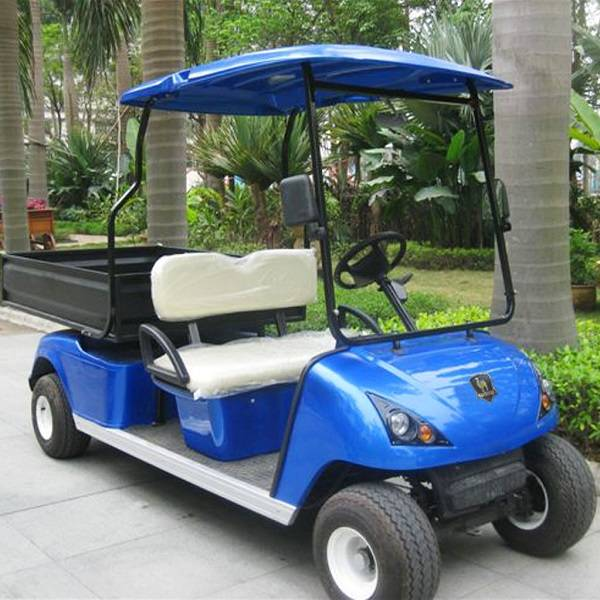 Improved 2 seater electric cargo cart for golf